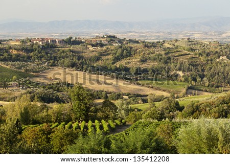 A view of the famous fields in Tuscany, Italy