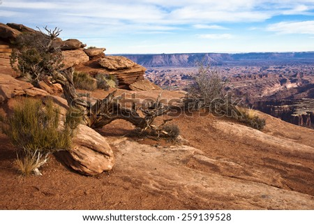 A view of the landscape in Canyonlands National Park - stock photo