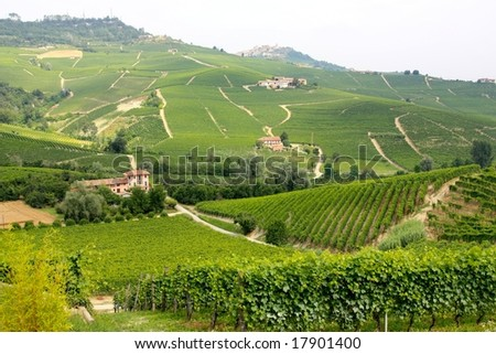 A view of the Langhe vineyards and villages in Italy - stock photo