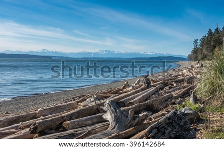 A view of the Olympic Mountains from Lincoln Park in West Seattle, Washington.