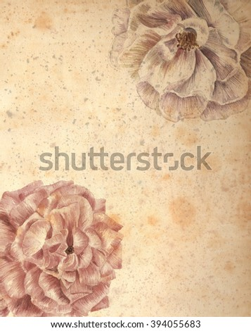 A vintage style drawing of two roses on a sheet of aged paper, with copyspace, post card or invitation design template