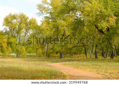 A vision in bright autumn colors of nature.  path in the Park on the island of the Yenisei river.