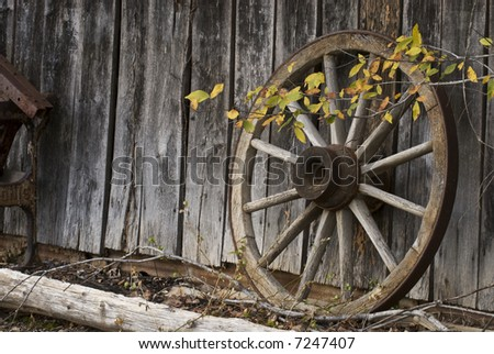 A wagon wheel leaning against an old barn with fall colored leaves