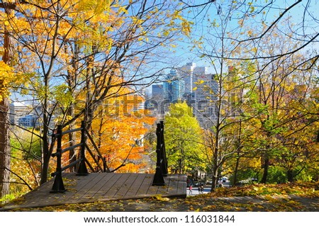 A walk in Montreal woods during foliage season, Quebec, Canada - stock photo