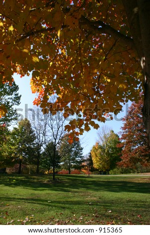 A walk in the park in Autumn - stock photo