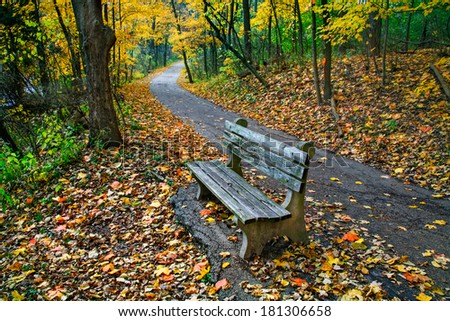A Walking Path And Park Bench Amid The Brilliant Colors Of A Rainy Autumn Day, Sharon Woods, Southwestern Ohio, USA