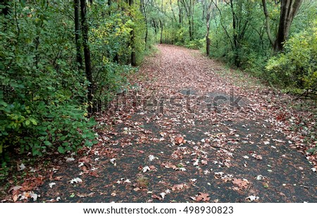 A walking path through the woods on a crisp Autumn day.