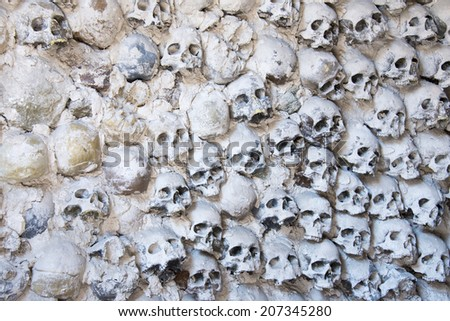 A wall of skulls - background - stock photo