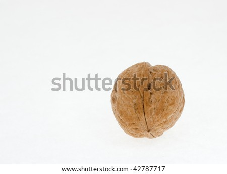 A walnut isolated on a plain background
