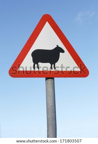 A warning of sheep on the road British sign.