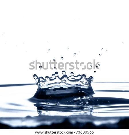 A water crown caused by a water droplet falling into a bowl of water.