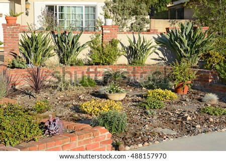 A water wise front yard in a Southern California home. California's drought has spurred many homeowners to remove their lawns and replace with native species and other drought tolerant plants.