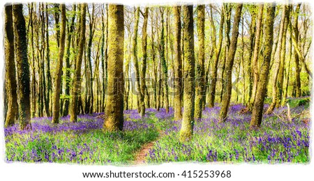 A watercolour painting of beautiful spring bluebell woods near Redruth in Cornwall - stock photo