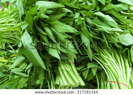 A watercress bunch or Water Spinach or Kangkung in malay term. Very popular Malaysia local vegetables especially when it cook with shirmp paste. Selective focus with shallow depth of field. - stock photo