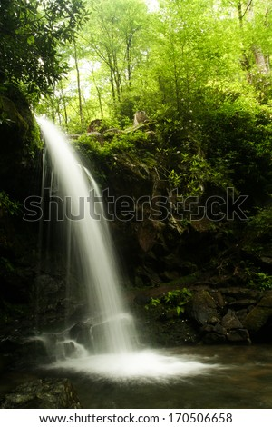 A waterfall in a forest.  Grotto Falls, Great Smoky Mountains National Park, TN, USA. - stock photo