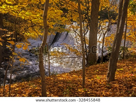 A waterfall in a forest of golden Autumn trees and fallen leaves.