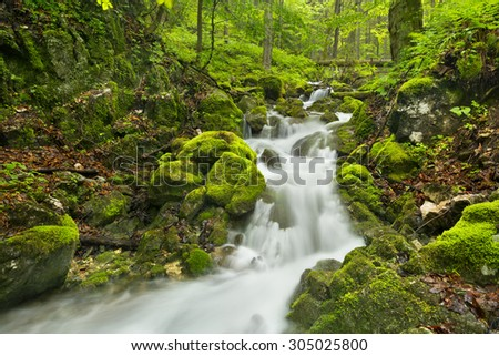 A waterfall in a lush gorge in Slovenský Raj in Slovakia.