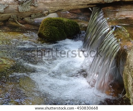 A waterfall over a fallen tree dam in a forest stream; See Canyon in Arizona
