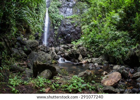 A waterfall tumbles into a beautiful rainforest on the tropical island of Raiatea in French Polynesia. Large tropical islands often have wet climates and plenty of sunshine, perfect for vegetation.  - stock photo