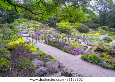 Outstanding Quotalpine Rock Gardenquot Stock Images Royaltyfree Images  With Handsome A Way Passes Thrugh A Colorful Rock Garden Alpine Garden Rockery With  Alpine With Delightful Fairy Lights For Garden Also Garden Gate Pub Hampstead Heath In Addition Hilton Garden Inn Washington Dc Downtown And Wind Garden Art As Well As Wyevale Garden Centre Brighton Additionally Garden Machinery From Shutterstockcom With   Handsome Quotalpine Rock Gardenquot Stock Images Royaltyfree Images  With Delightful A Way Passes Thrugh A Colorful Rock Garden Alpine Garden Rockery With  Alpine And Outstanding Fairy Lights For Garden Also Garden Gate Pub Hampstead Heath In Addition Hilton Garden Inn Washington Dc Downtown From Shutterstockcom