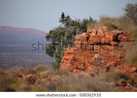 Dating in the high desert in Sydney