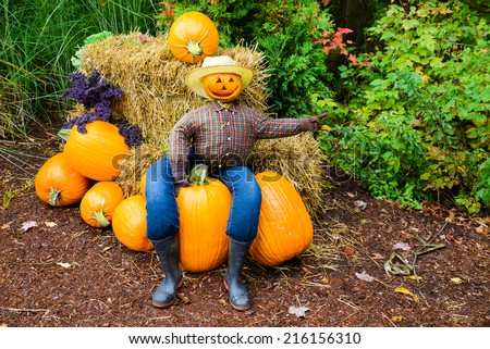 A welcoming scarecrow with a grinning Jack-o-lantern head sits on a pumpkin pile and  points the way.  - stock photo