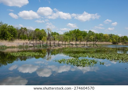 A wetland view on a nice Spring day at the John Heinz National Wildlife Refuge in Tinicum Pennsylvania. - stock photo