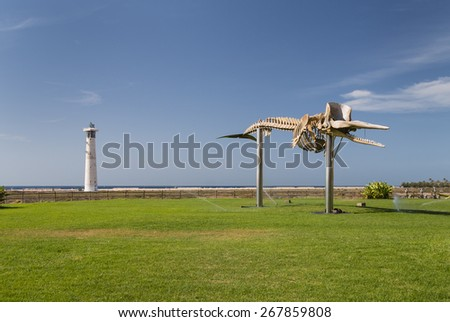A whale skeleton in Fuerteventura, Spain with the Jandia lighthouse in the background - stock photo