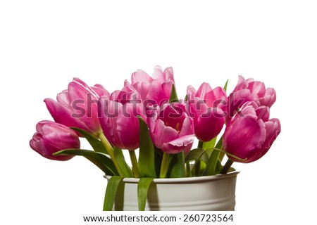 A white can vase with pink tulips - stock photo