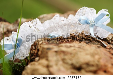 A white garter with blue ribbon a rock.  Shallow D.O.F ? some of the garter in focus, foreground and background out of focus. - stock photo