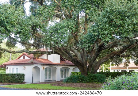 A white plaster clubhouse at a condo or apartment complex under a massive old oak tree - stock photo