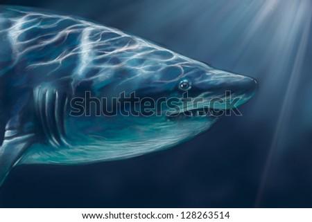 A white shark swimming along underwater illustration, digital tablet - stock photo