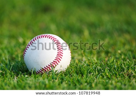 A white used baseball on the fresh green grass with copy space - stock photo