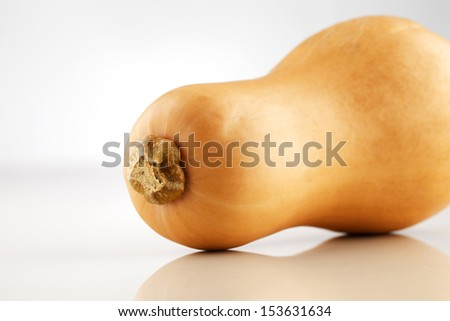 A whole organic Australian Squash photographed on a white ceramic surface - stock photo