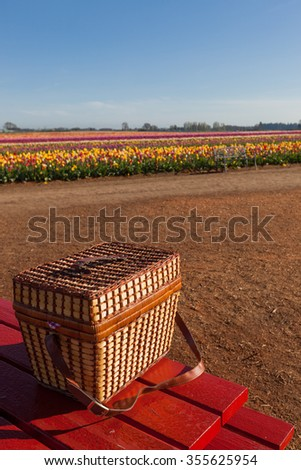 A wicker picnic basket sitting on a red table at a farm with rows of colorful tulip blooms in the background. - stock photo