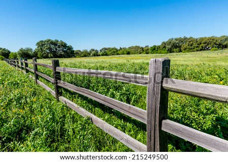 A Wide Angle View of a Rustic Texas Wooden Fence Under a Blue Sky with a Beautiful Meadow Blanketed with Yellow Wildflowers. - stock photo