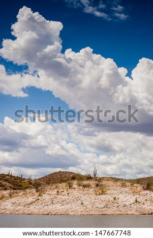 A wide shot looking at the shore of Lake Roosevelt in Arizona. - stock photo