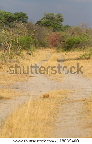 A wilderness two track road in Namibia - stock photo