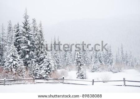 A winter landscape in the Colorado wilderness - stock photo