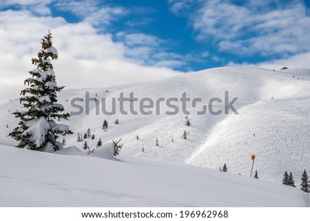 A winter view of the snow-covered Dobratsch in Carinthia - stock photo