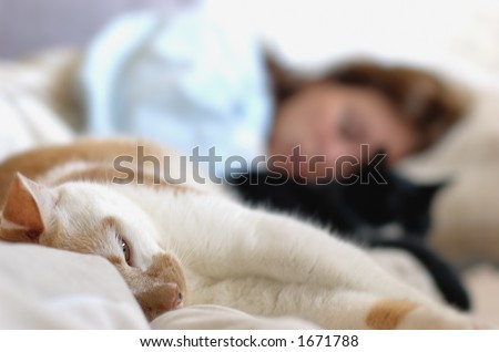 a woman and two cats relaxing on bed