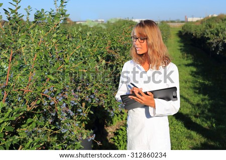 A Woman as a inspector on a food plantation - stock photo