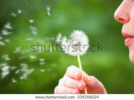 a woman blowing a dandelion during summer time (focus on woman) - stock photo