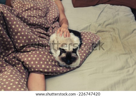 A woman is lying in bed and is petting a cat - stock photo