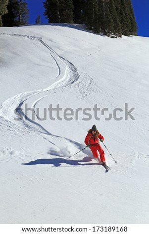 A woman making telemark ski turns down a slope in the Utah mountains, USA. - stock photo