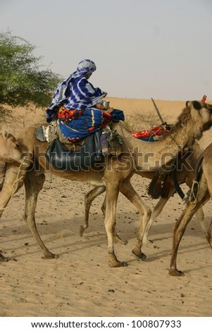 A woman of the Tuareg Berber tribe in the Sahara desert of Mali, Africa rides her camel as part of a caravan