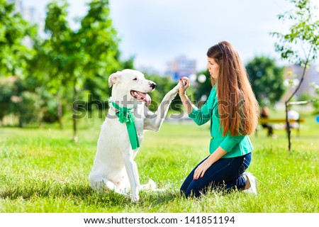 A woman plays with a dog on the grass. Training the dog, the performance of the teams. - stock photo