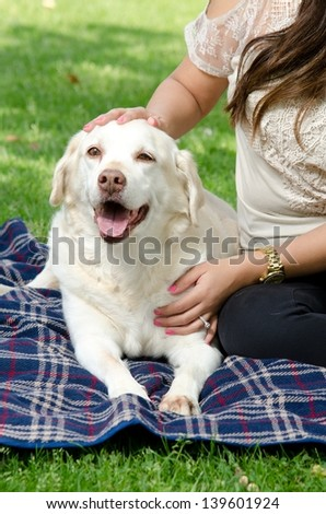 a woman sitting with her pet dog in the park. - stock photo
