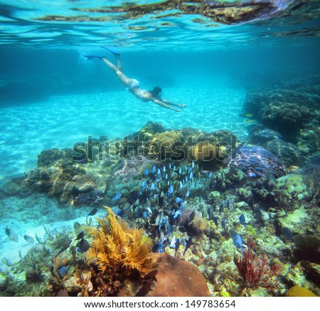 A woman snorkeling in the beautiful coral reef with lots of fish. - stock photo