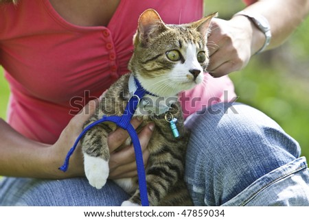 A Women is getting a cat into a leash